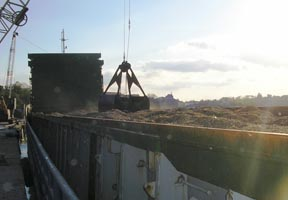 Wood Chips at The Port of Mistley